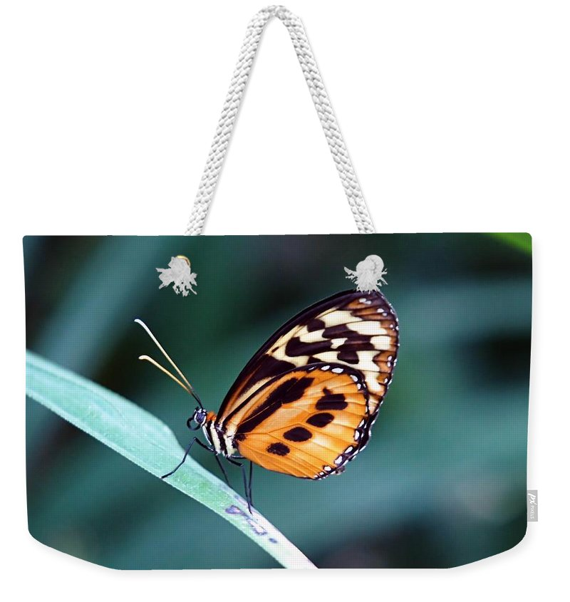 Butterfly Weekender Tote Bag featuring the photograph Balanced by Jenny Hudson