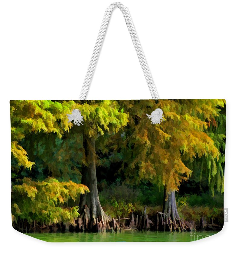 Cypress Weekender Tote Bag featuring the photograph Bald Cypress Trees 1 - Digital Effect by Debbie Portwood