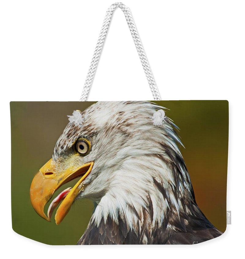 Nina Stavlund Weekender Tote Bag featuring the photograph Bald Eagle... by Nina Stavlund