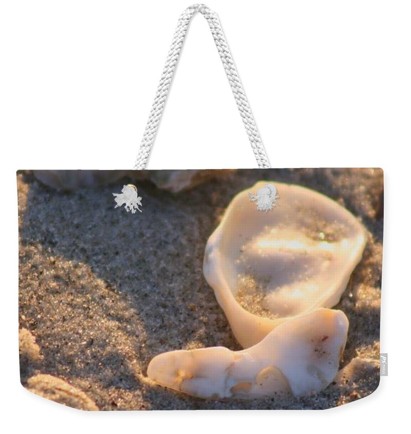 Shells Weekender Tote Bag featuring the photograph Bald Head Island Shells by Nadine Rippelmeyer