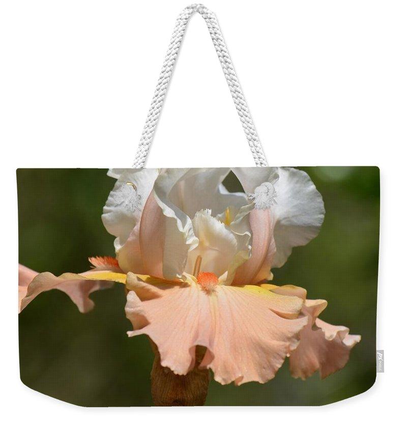 Ballerina Iris Weekender Tote Bag featuring the photograph Ballerina Iris by Maria Urso