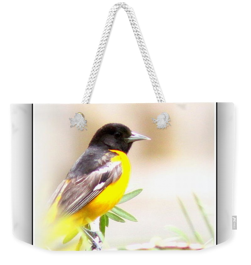 Baltimore Oriole Weekender Tote Bag featuring the photograph Baltimore Oriole 4348-10 by Travis Truelove