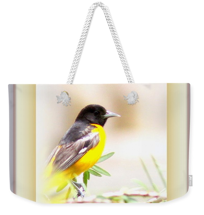 Baltimore Oriole Weekender Tote Bag featuring the photograph Baltimore Oriole 4348-12 by Travis Truelove