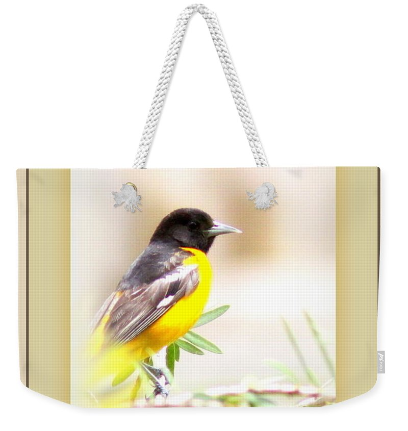 Baltimore Oriole Weekender Tote Bag featuring the photograph Baltimore Oriole - 4348-14 by Travis Truelove