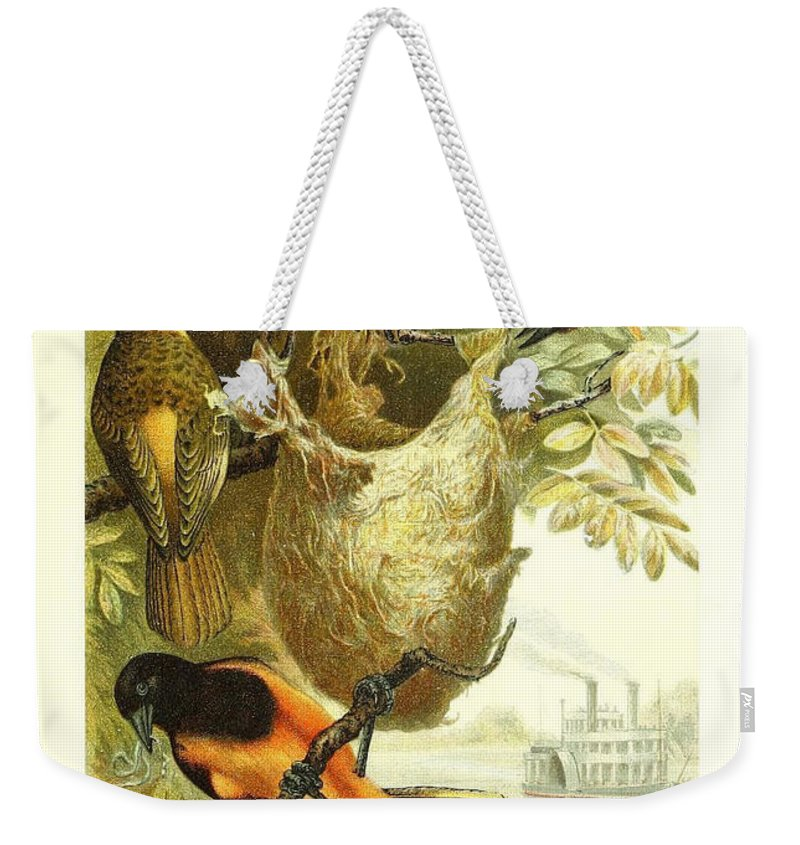 Baltimore Weekender Tote Bag featuring the painting Baltimore Orioles by Philip Ralley