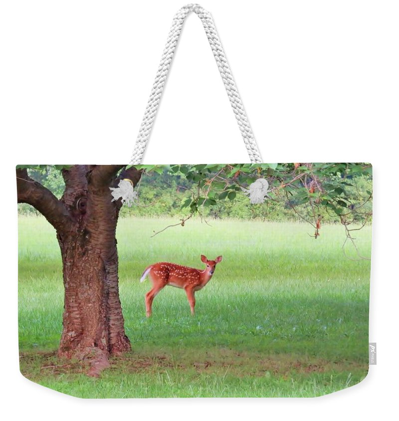 Bird Weekender Tote Bag featuring the photograph Bambi Days by Art Dingo