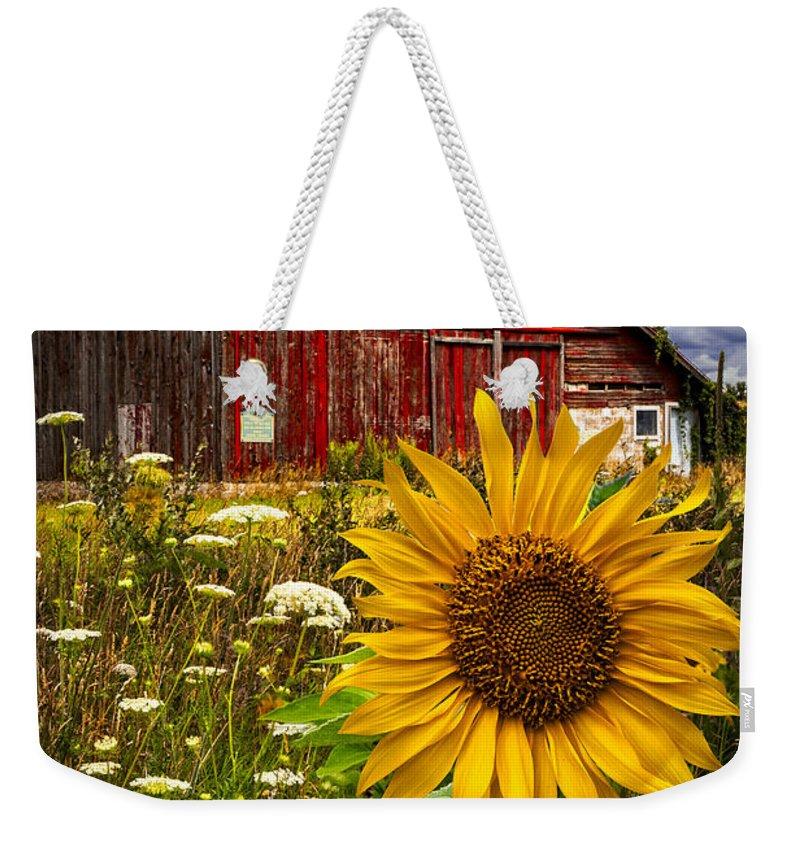 Barn Weekender Tote Bag featuring the photograph Barn Meadow Flowers by Debra and Dave Vanderlaan