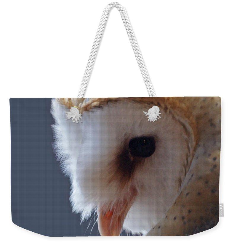 Barn Owls Weekender Tote Bag featuring the digital art Barn Owl Dry Brushed by Ernie Echols