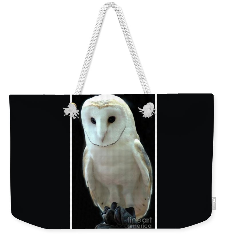 Barn Weekender Tote Bag featuring the photograph Barn Owl. by Kathleen Struckle