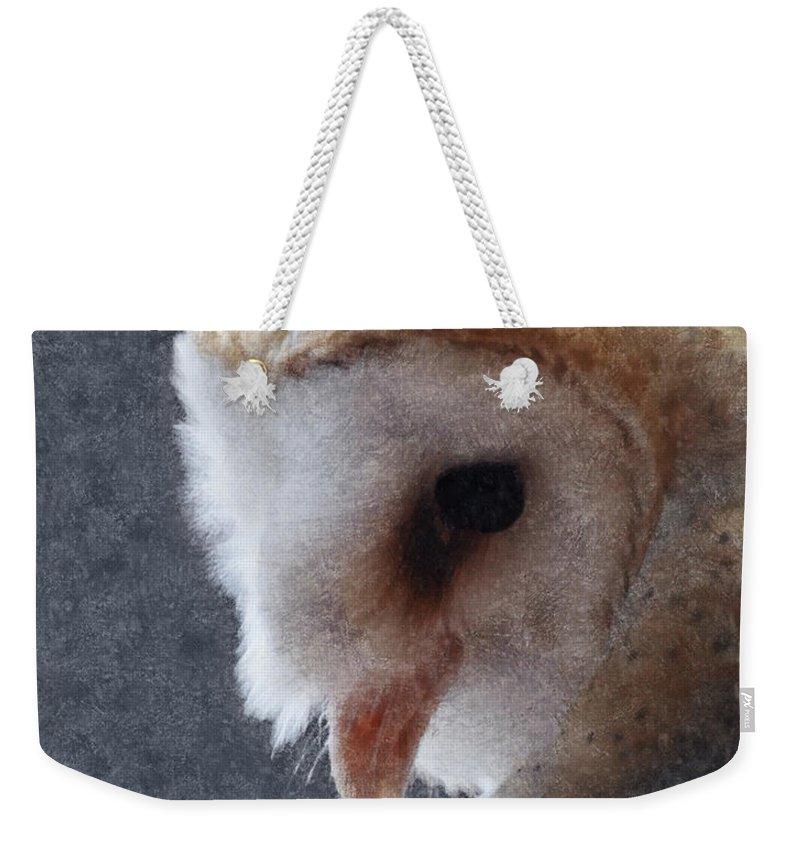 Barn Owls Weekender Tote Bag featuring the digital art Barn Owl Painterly by Ernie Echols