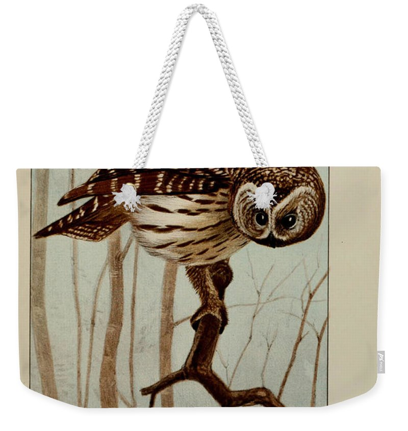 Barred Weekender Tote Bag featuring the painting Barred Owl by Ernest Seton Thompson