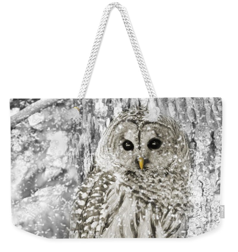 Owl Weekender Tote Bag featuring the photograph Barred Owl Snowy Day In The Forest by Jennie Marie Schell