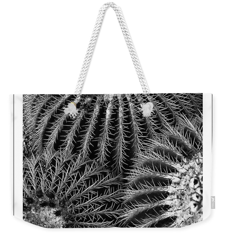 Cactus Weekender Tote Bag featuring the photograph Barrel Cactus Poster by Mike Nellums