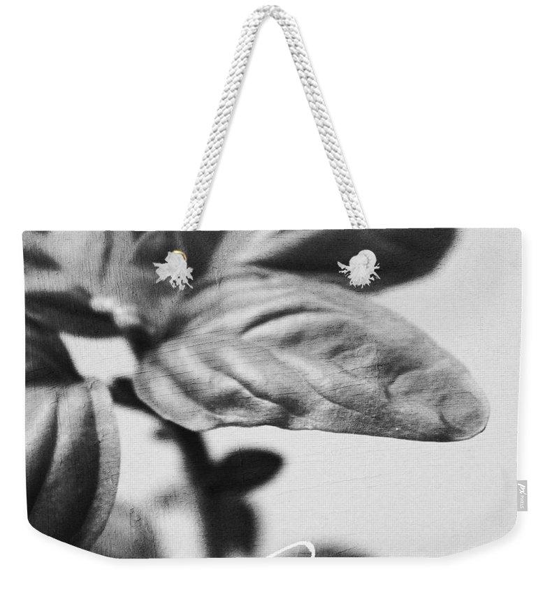 Basil Weekender Tote Bag featuring the mixed media Basil by Linda Woods