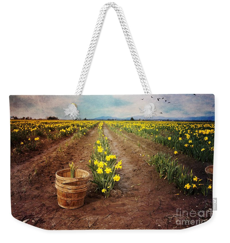Daffodil Weekender Tote Bag featuring the photograph basket with Daffodils by Sylvia Cook