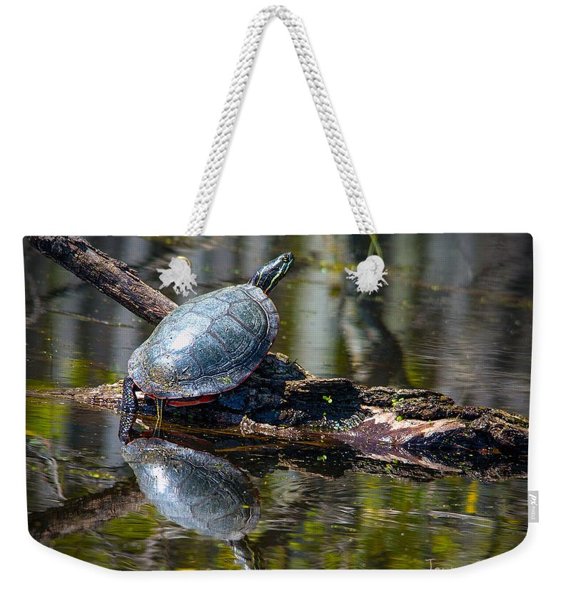 Turtle Weekender Tote Bag featuring the photograph Basking Turtle by Jayne Gohr