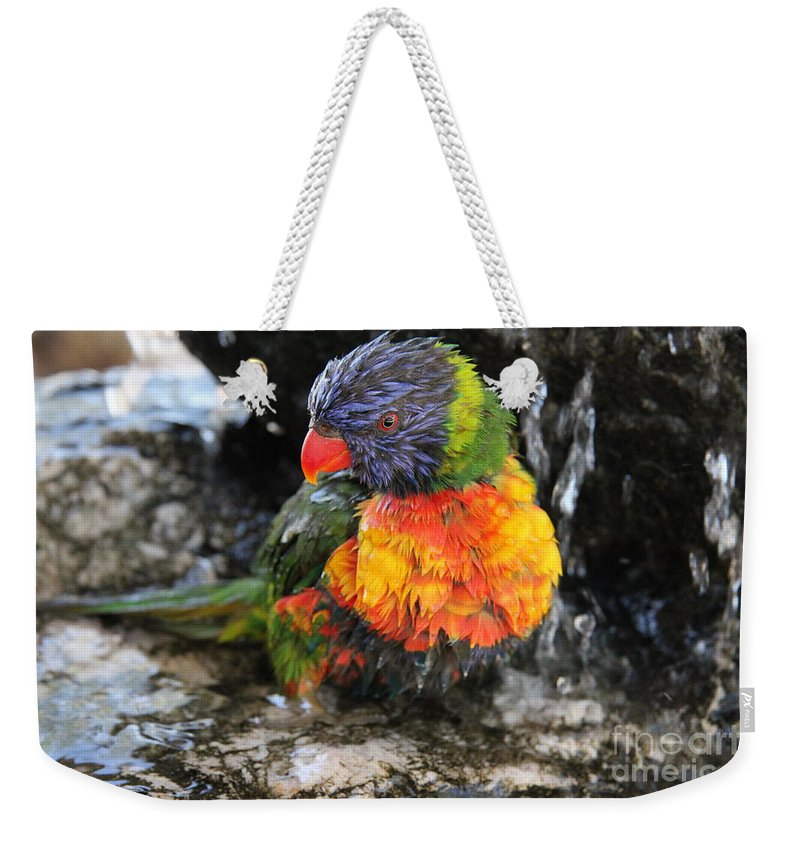 Parrot Weekender Tote Bag featuring the photograph Bath Time by Diane Greco-Lesser