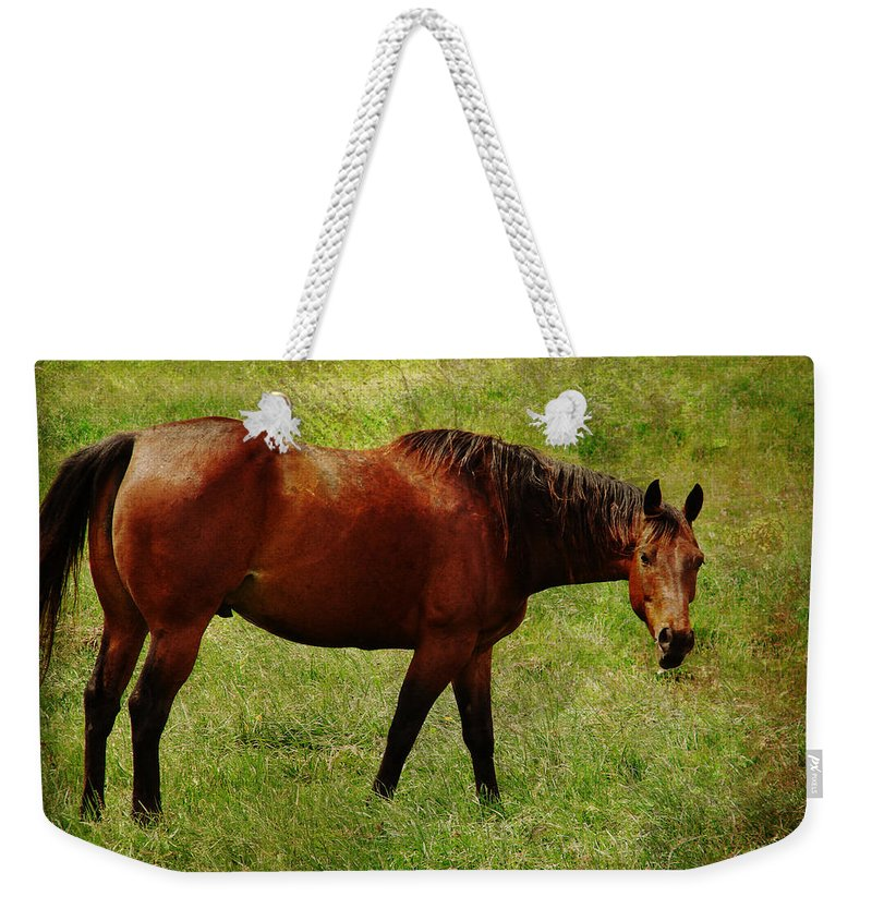 Horse Weekender Tote Bag featuring the digital art Bay Horse by Cassie Peters