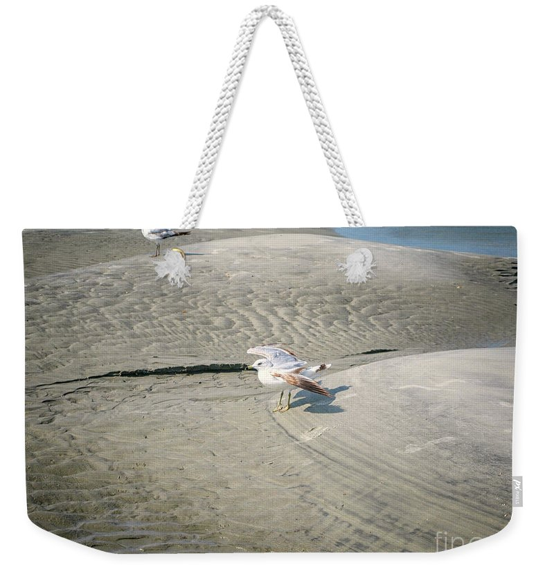 Gulls Weekender Tote Bag featuring the photograph Beach Scene by Erika Weber