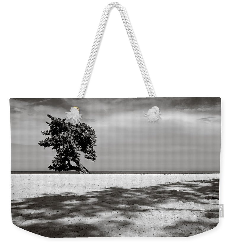 Tree Weekender Tote Bag featuring the photograph Beach Tree by Dave Bowman