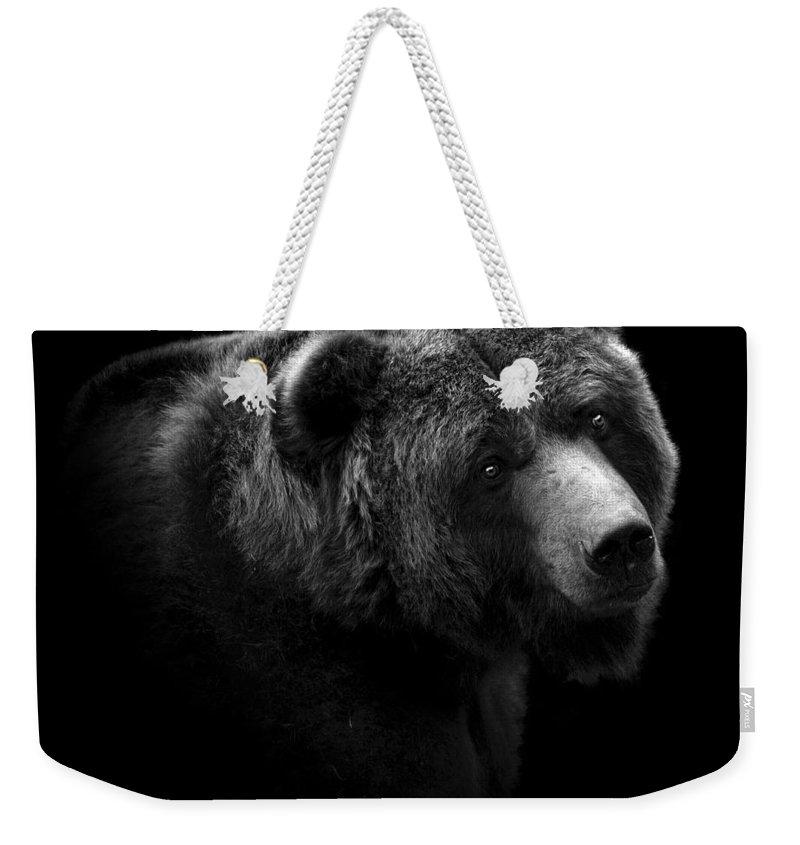 Zoo Animals Weekender Tote Bags