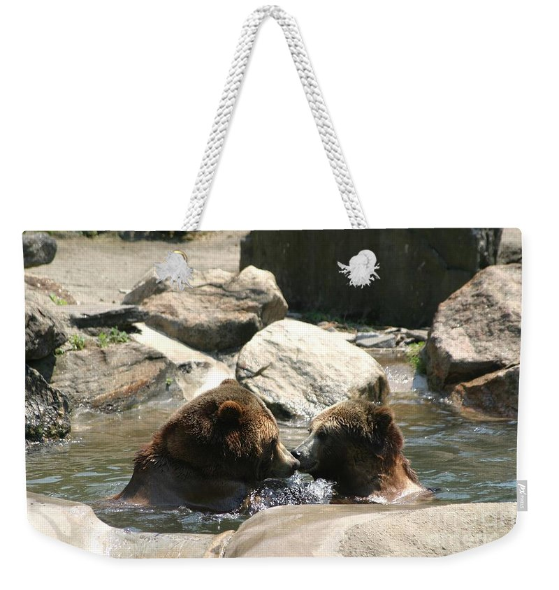 Bears Weekender Tote Bag featuring the photograph Bear Smooches by Living Color Photography Lorraine Lynch