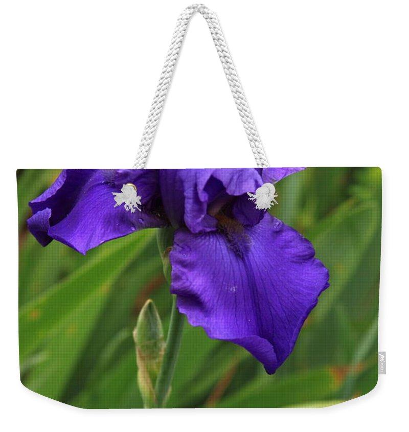 Reid Callaway Purple Iris Flower Weekender Tote Bag featuring the photograph Beautiful Purple Iris Flower Art by Reid Callaway