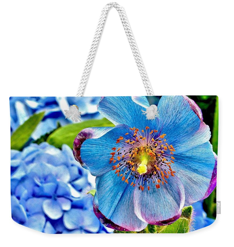 Beautiful Weekender Tote Bag featuring the photograph Beautiful Blue Orchid by Nick Zelinsky