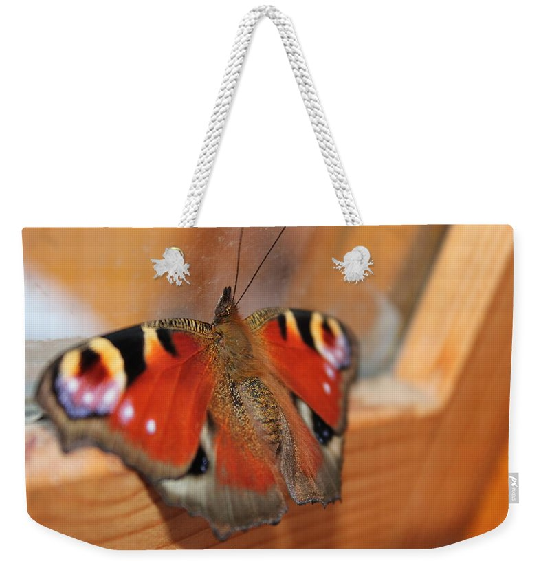 Butterfly Weekender Tote Bag featuring the photograph Beautiful Butterfly by Perggals - Stacey Turner