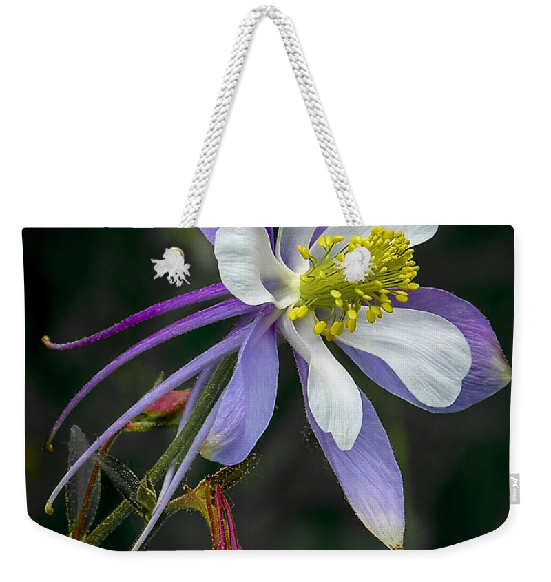 Artwork Weekender Tote Bag featuring the photograph Beautiful Columbine by Ernie Echols