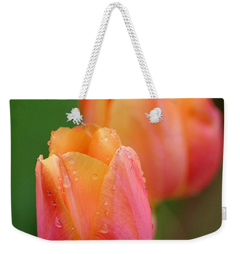 Tulips Weekender Tote Bag featuring the photograph Beautiful Coral Tulips by Living Color Photography Lorraine Lynch