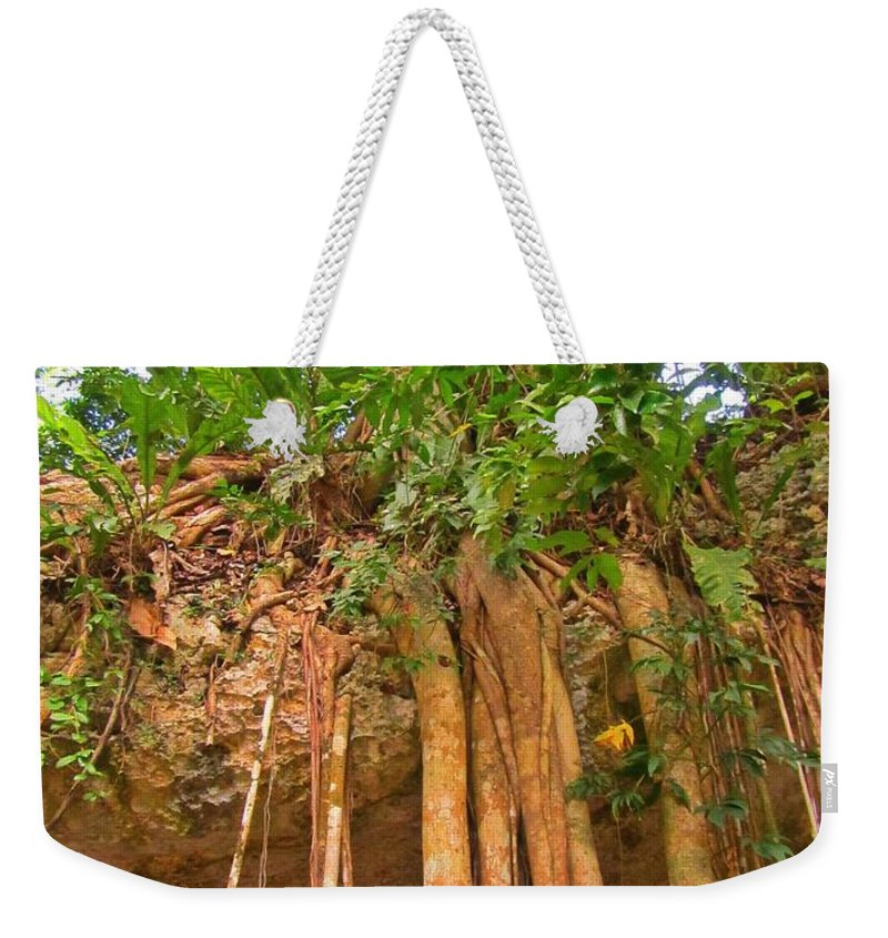 Beautiful Forest Weekender Tote Bag featuring the photograph Beautiful Forest by John Malone