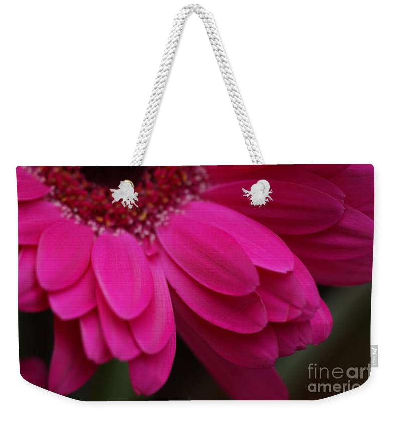 Pink Weekender Tote Bag featuring the photograph Beautiful Petals by Carol Lynch