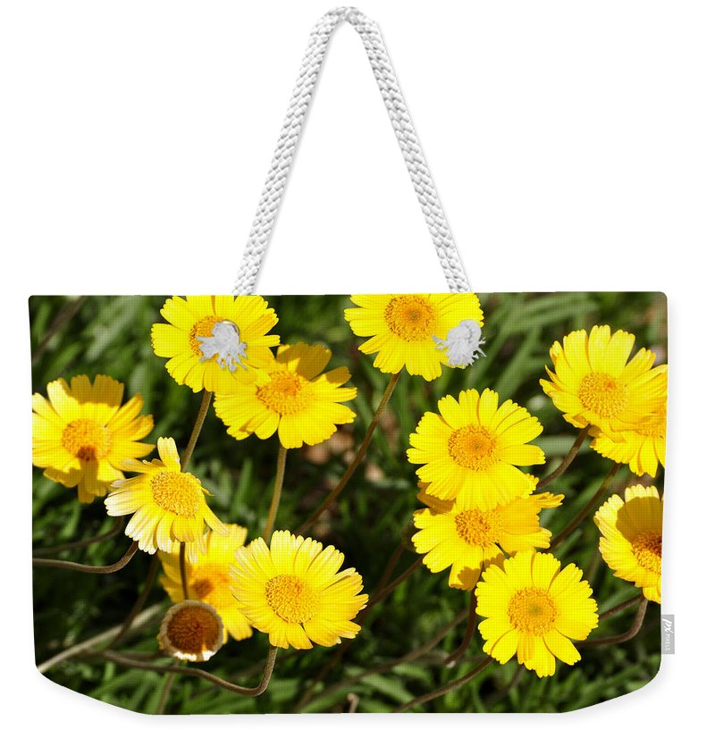 Beautiful Weekender Tote Bag featuring the photograph Beautiful Weeds 32655 by Jerry Sodorff