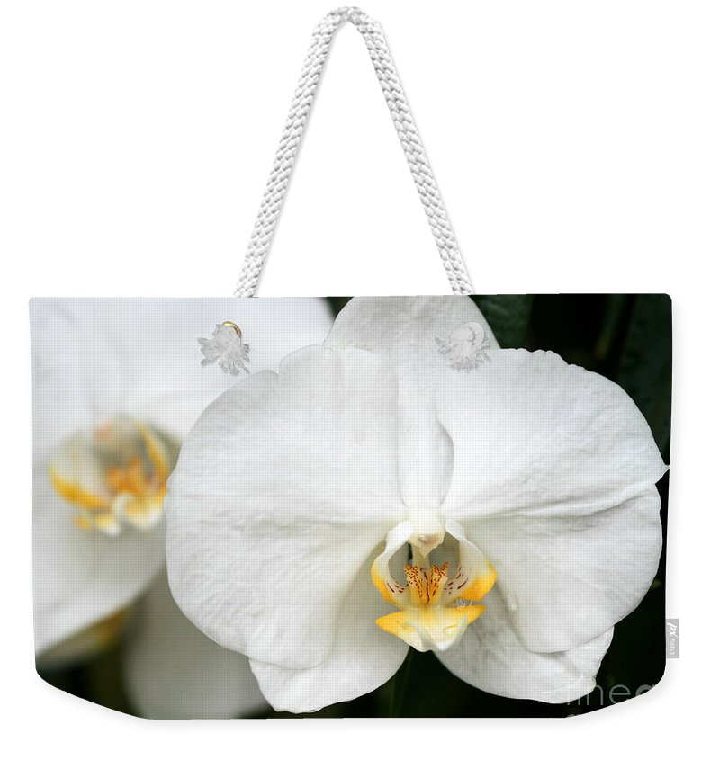 Macro Weekender Tote Bag featuring the photograph Beautiful White Phanaenopsis Orchids by Sabrina L Ryan