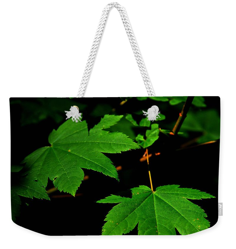 Foliage Weekender Tote Bag featuring the photograph Beauty In Nature by Jeanette C Landstrom
