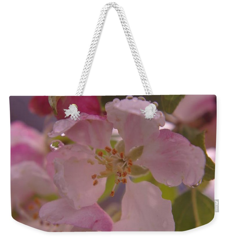 Dew Drops Weekender Tote Bag featuring the photograph Beauty Is A Dew Drop On A Flower by Jeff Swan