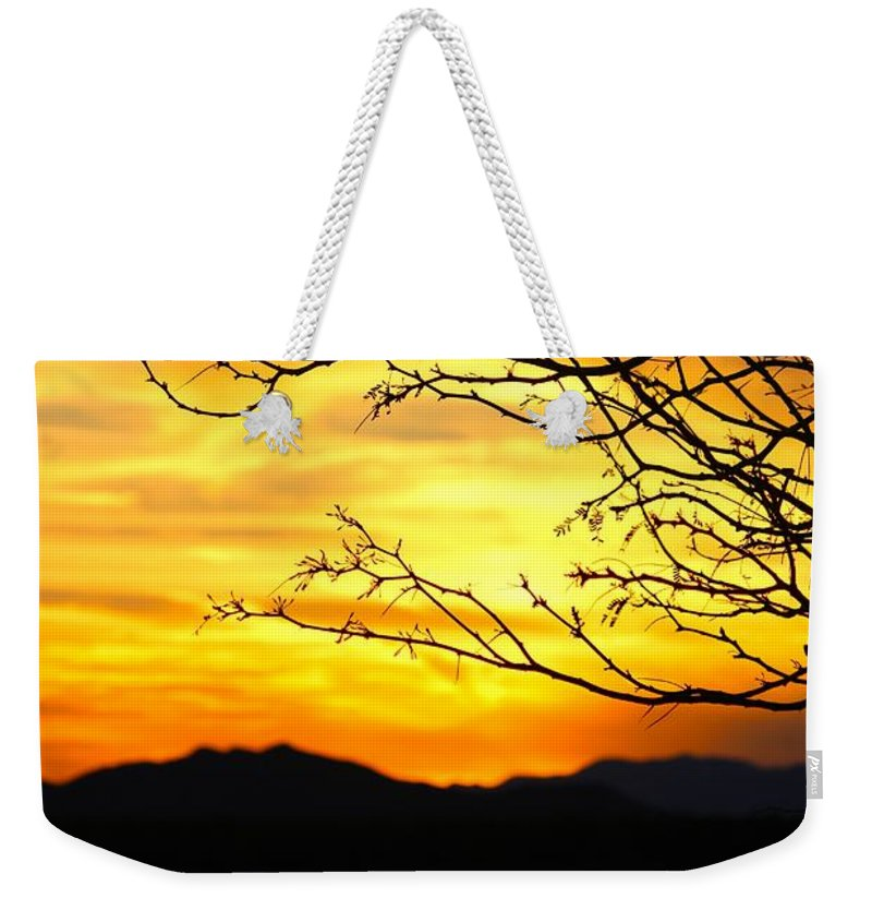 Sunset Weekender Tote Bag featuring the photograph Beauty by Tiffany Erdman