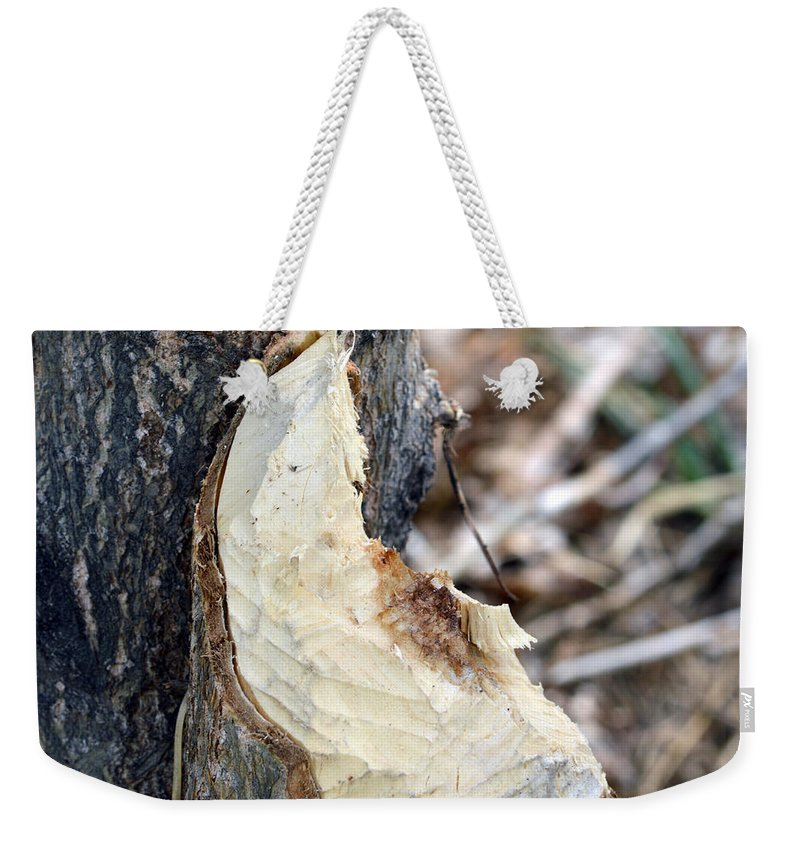 Tree Weekender Tote Bag featuring the photograph Beaver Marks by Brent Dolliver