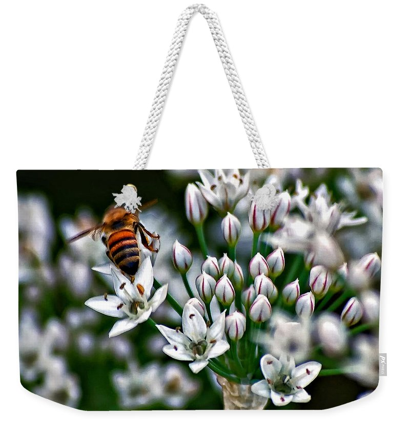 Bee Weekender Tote Bag featuring the photograph Because by Steve Harrington