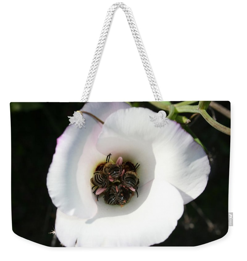Bee-in Weekender Tote Bag featuring the photograph Bee-in by Ellen Henneke