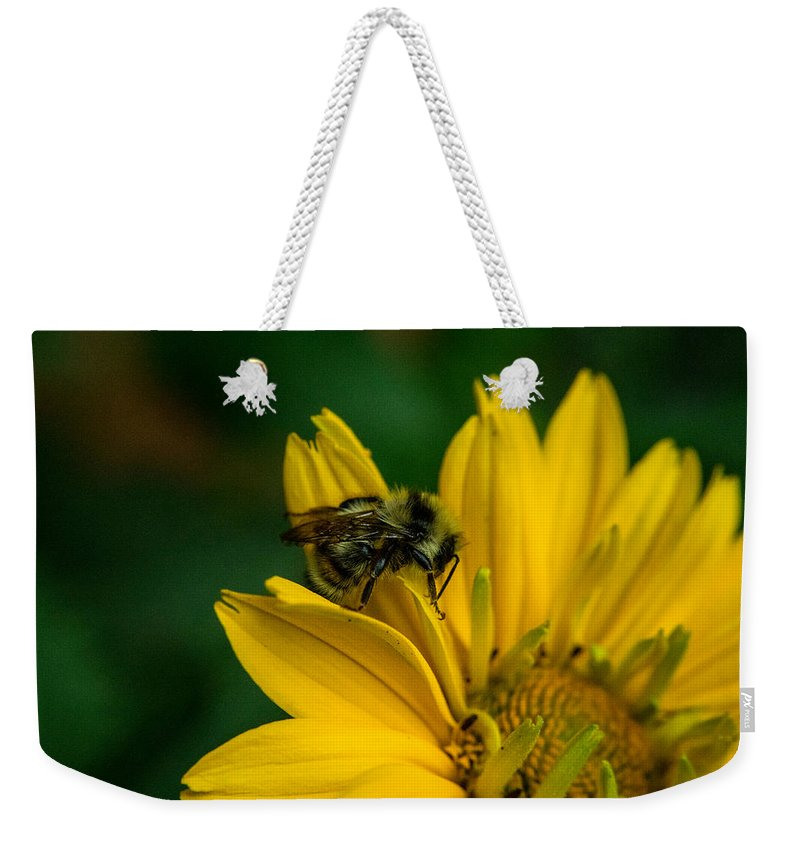 Alberta Weekender Tote Bag featuring the photograph Bee On A Quest by Douglas Barnett
