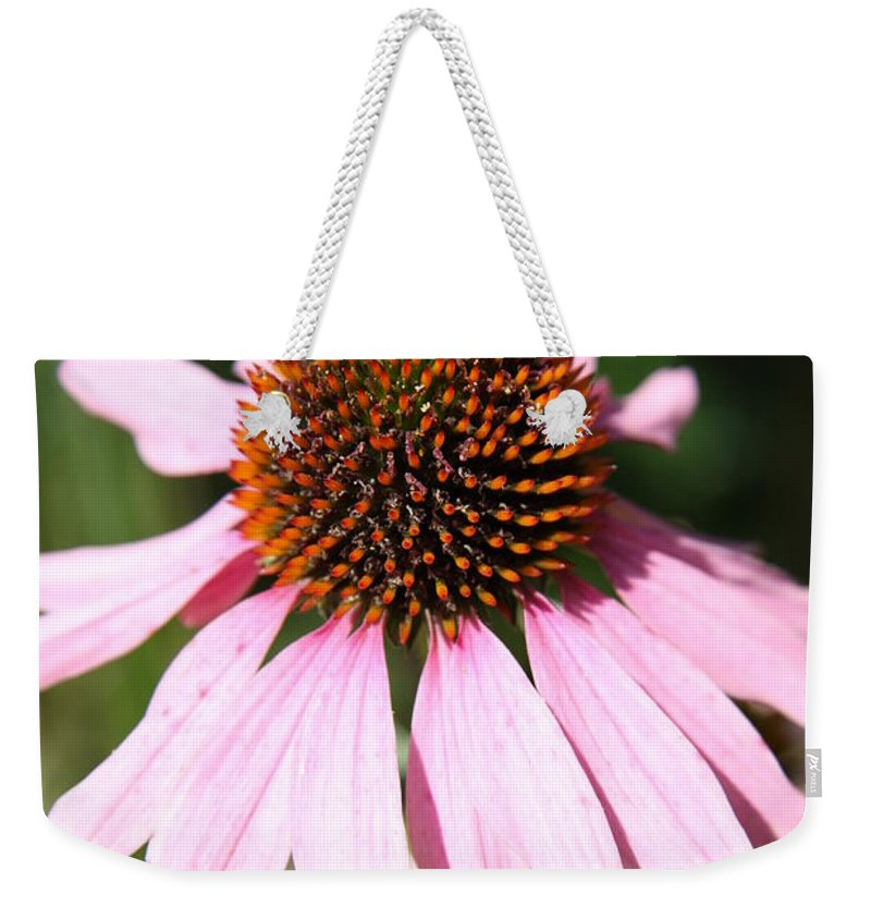 Coneflower Weekender Tote Bag featuring the photograph Bee On Coneflower by Christiane Schulze Art And Photography