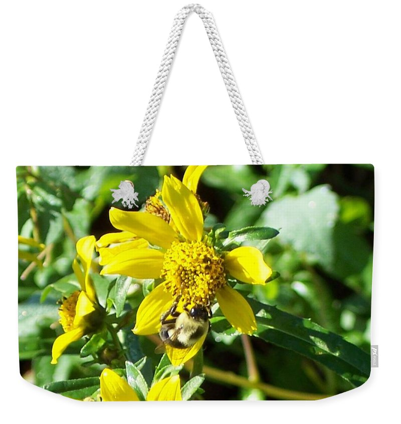 Bee Weekender Tote Bag featuring the photograph Bee On Flower by Michelle Miron-Rebbe