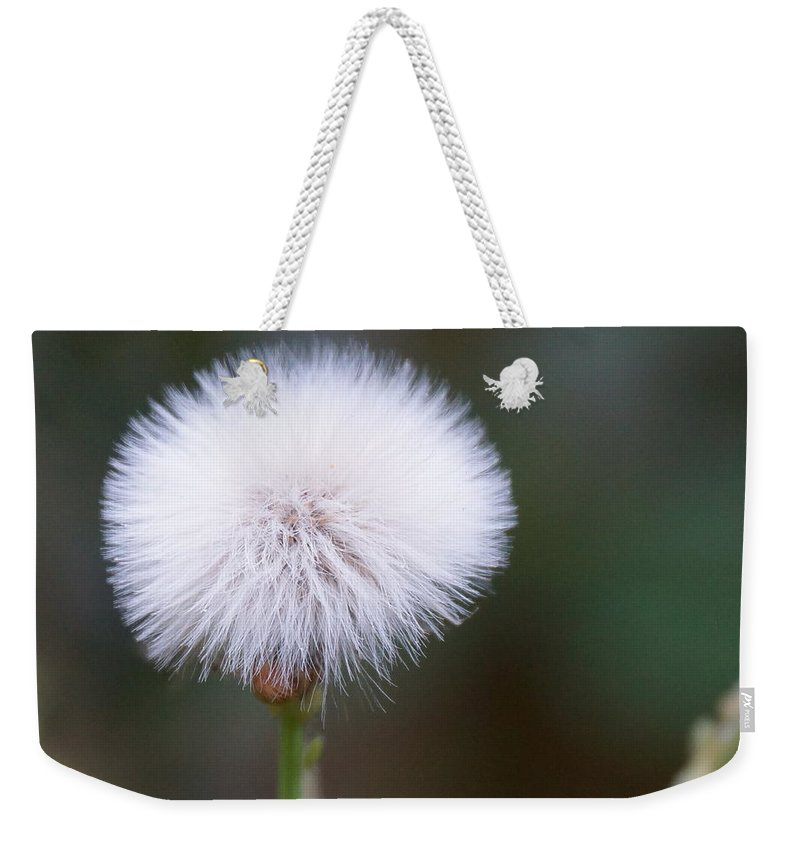 Garden Weekender Tote Bag featuring the photograph Before The Wind Blows by Paul Wilford