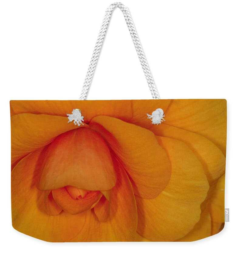 Flower Weekender Tote Bag featuring the photograph Begonia 3 by Andy Shomock