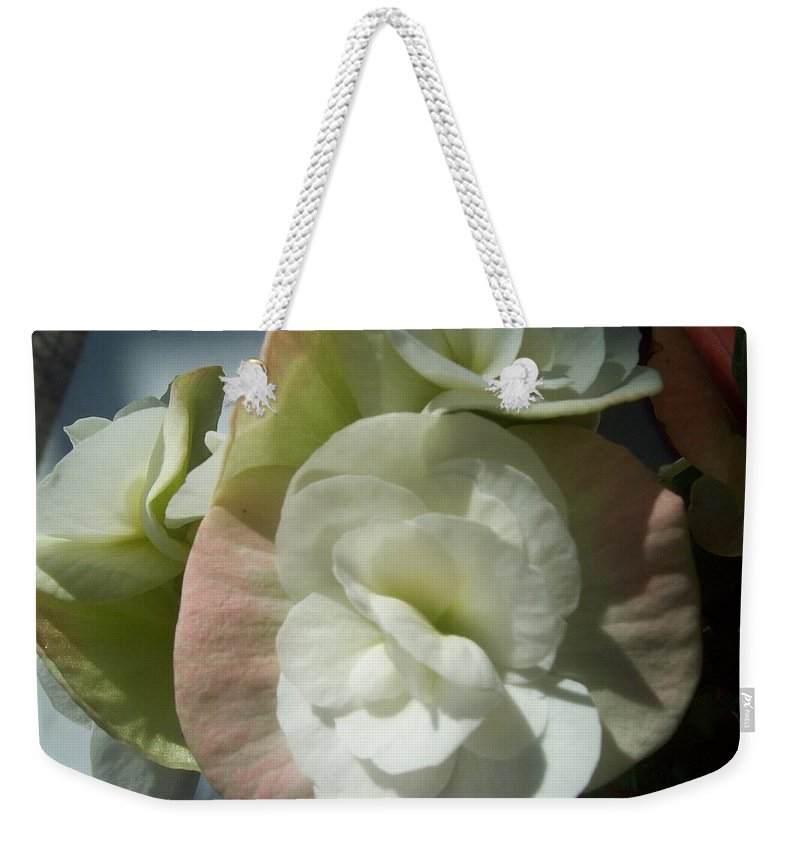 Photo Weekender Tote Bag featuring the photograph Begonia by Galina Todorova