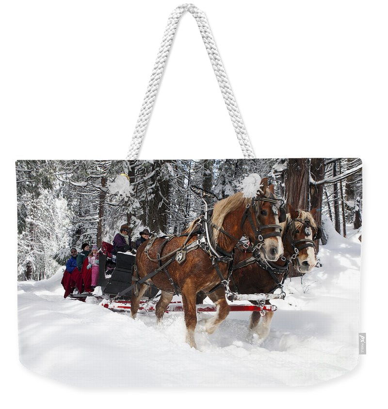Travel Weekender Tote Bag featuring the photograph Belgian Draft Horses Pulls A Sleigh In Yosemite National Park by Jason O Watson