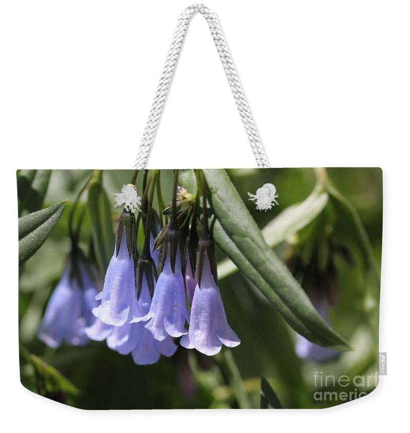 Nature-blue Bells-blue Flowers-wild Flowers Weekender Tote Bag featuring the photograph Bells by Marlous Bleazard