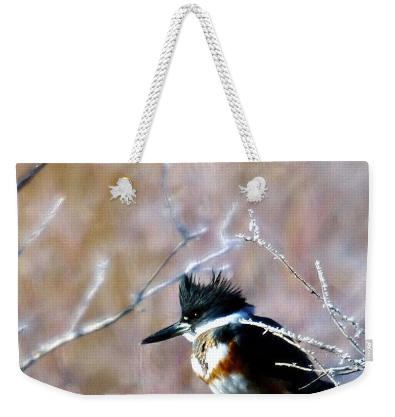 Birds Weekender Tote Bag featuring the photograph Belted Kingfisher by Jeff Swan